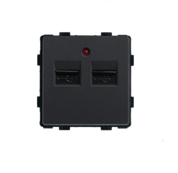 LUX USB Dose Modul 2 Fach in Schwarz LX-2USB-12